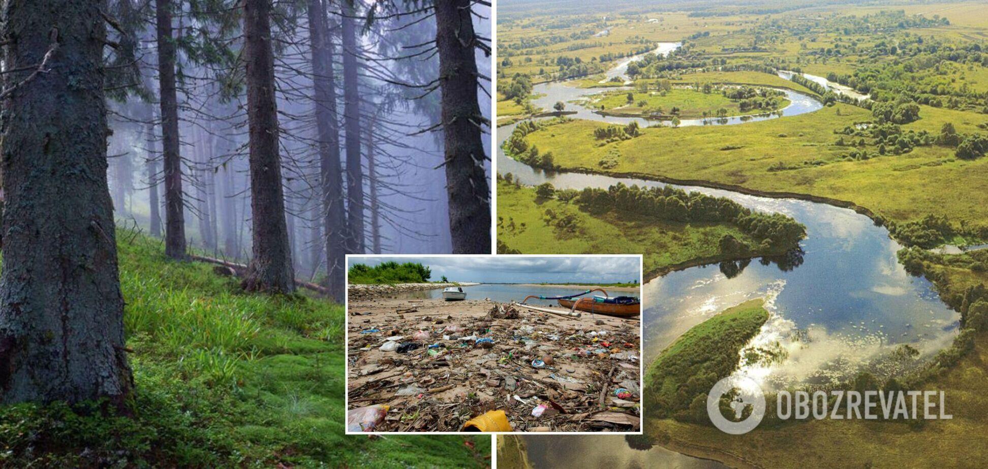 В Україні відсутня ефективна державна природоохоронна політика