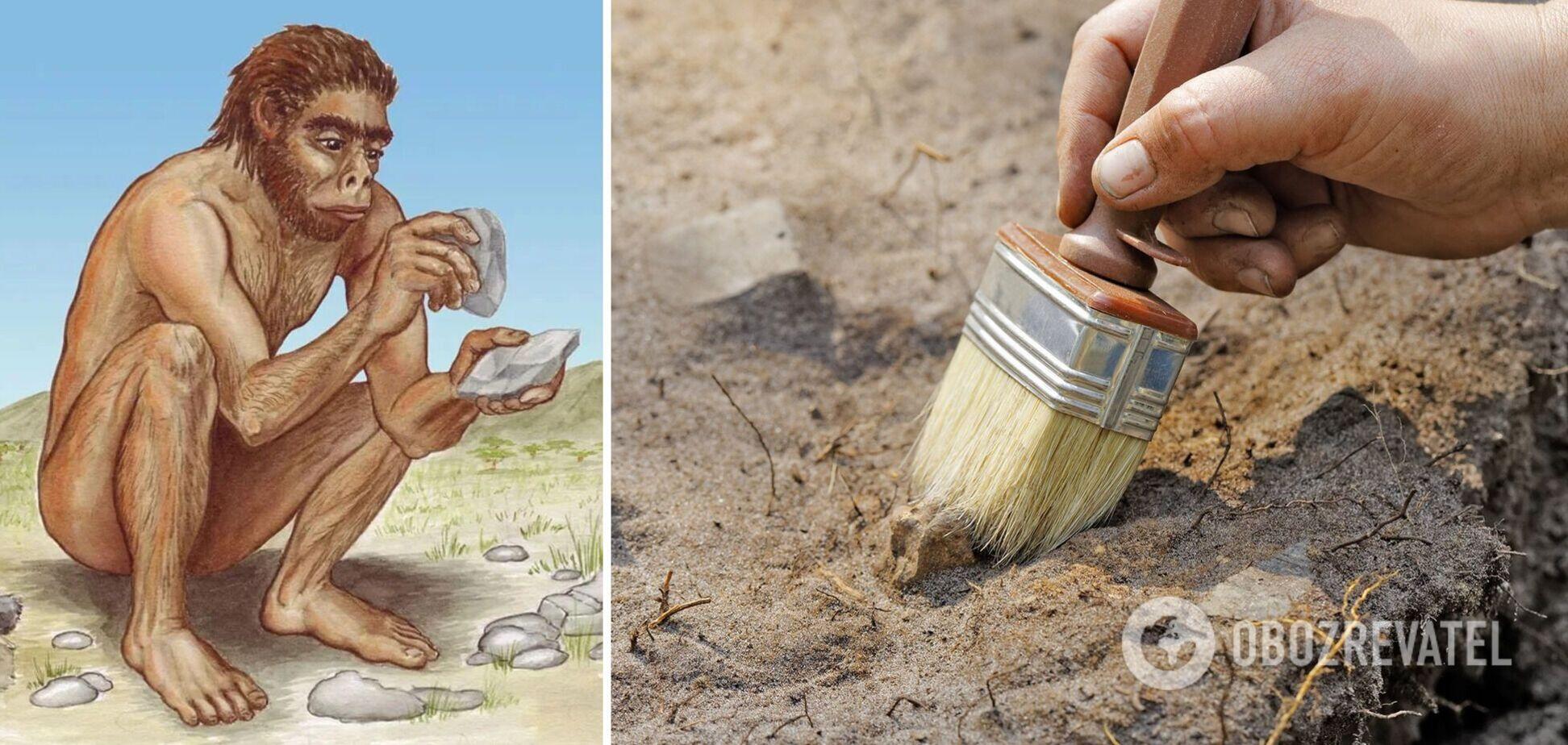 Орудия труда сделаны из костей животных