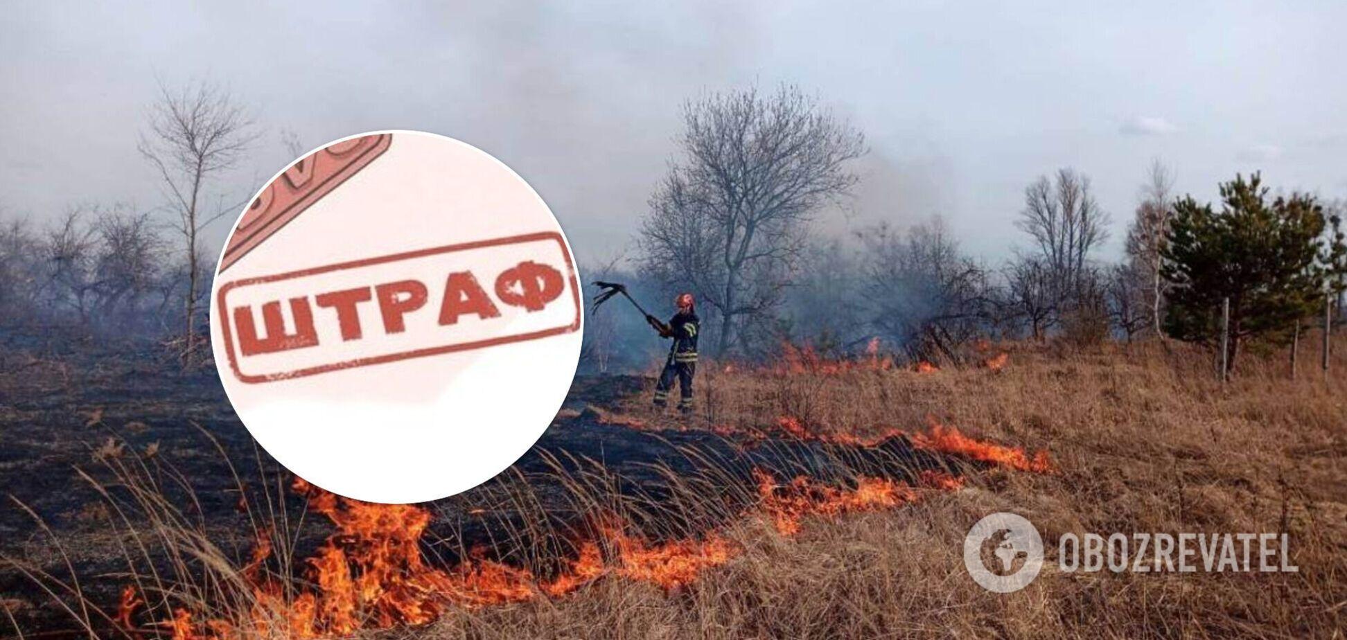 Как оштрафуют за сжигание листвы