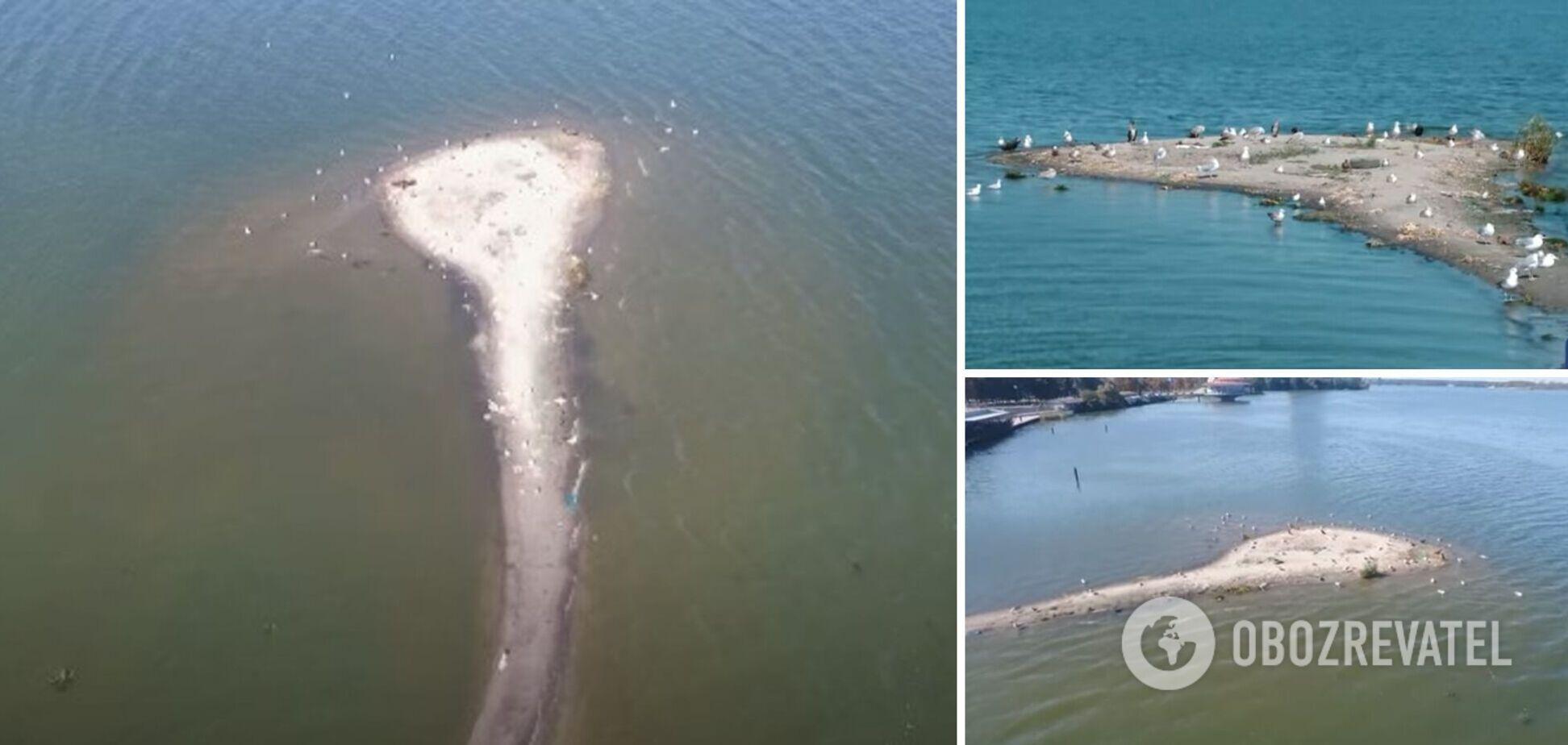В Днепре посреди реки образовался небольшой остров