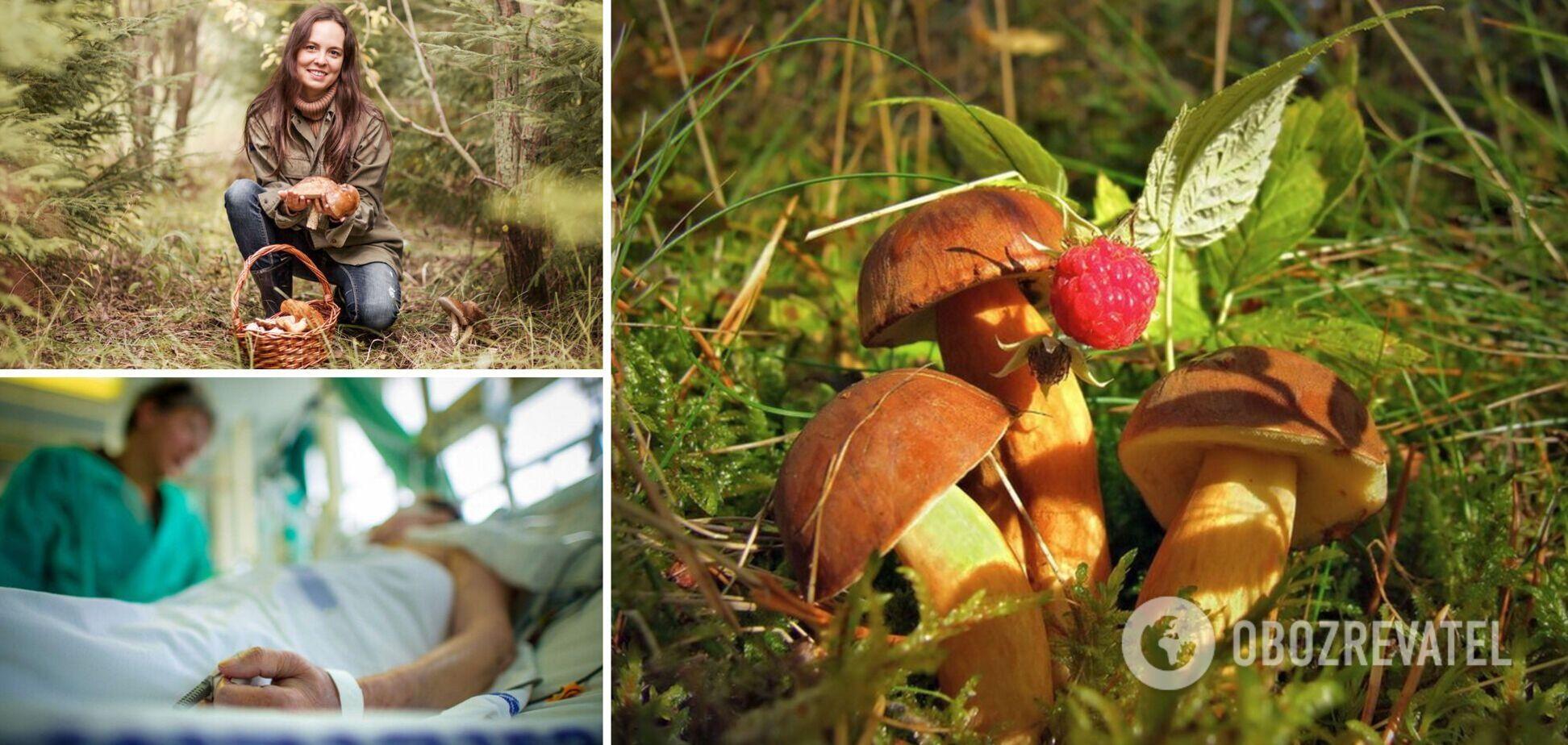 Задуха і марення: медикиня назвала перші симптоми отруєння грибами і сказала, кому вони протипоказані