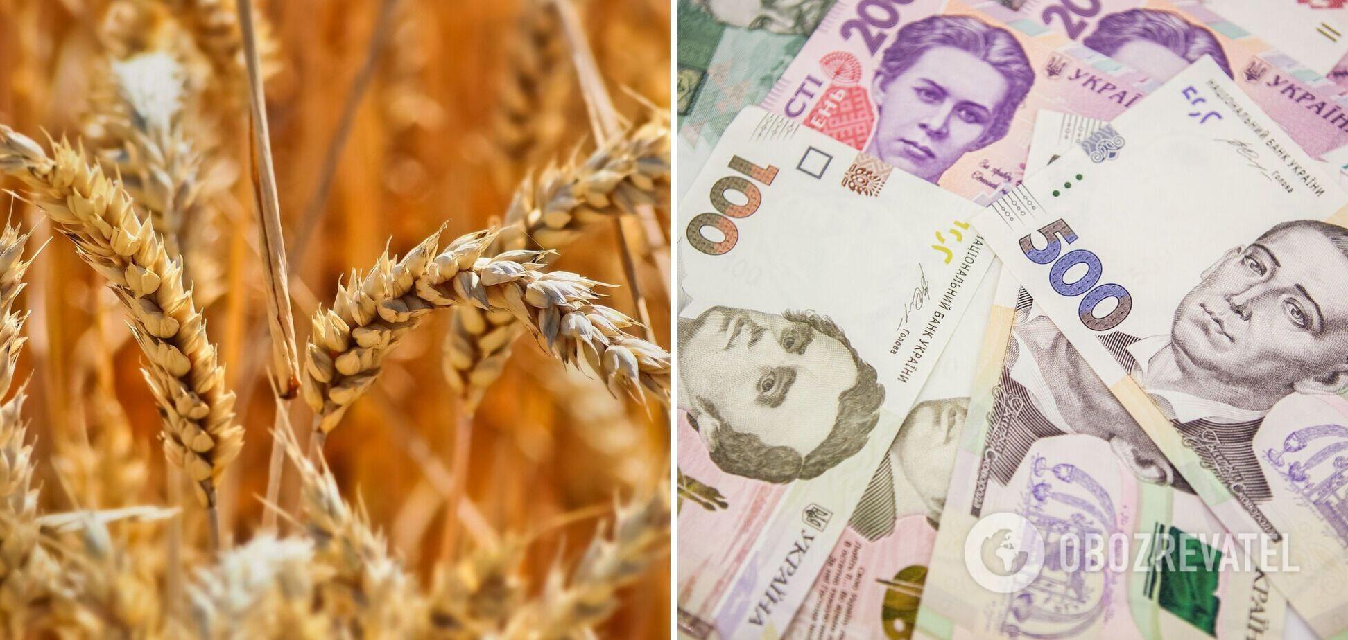 Урожай зерна: Україна може прогодувати ще й Катар?
