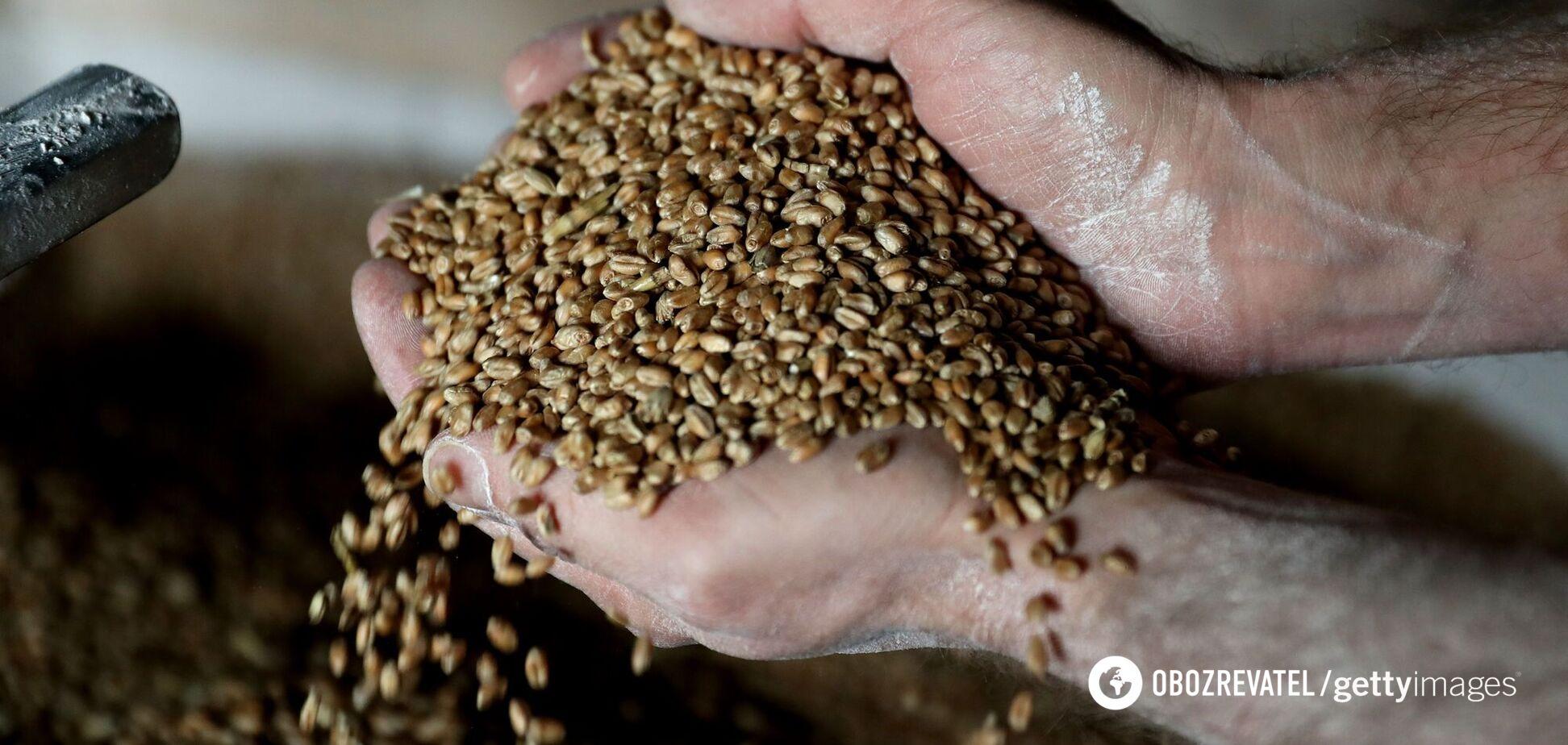 Запасы зерна в Украине критически упали: почему и чем это грозит