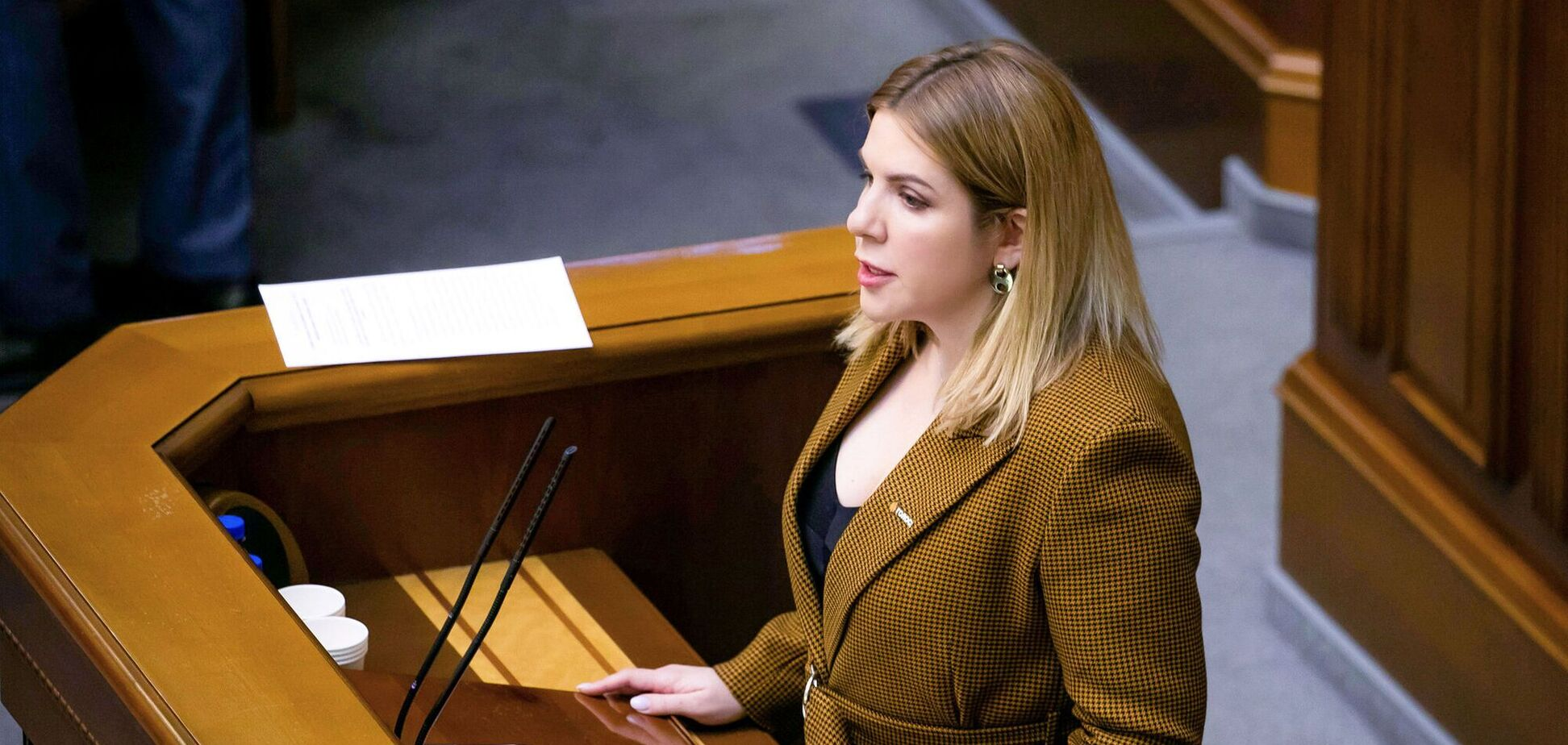 Прихоти власти и самопиар, – Кира Рудык о проекте госбюджета-2022