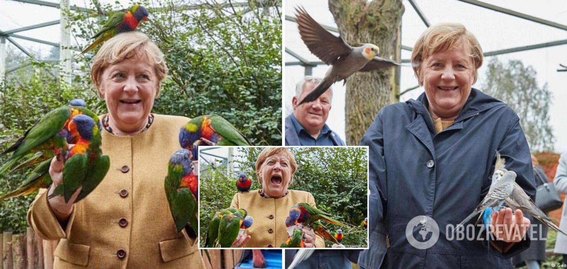 В сети стали вирусными фото канцлера ФРГ Меркель с попугаями в птичьем парке