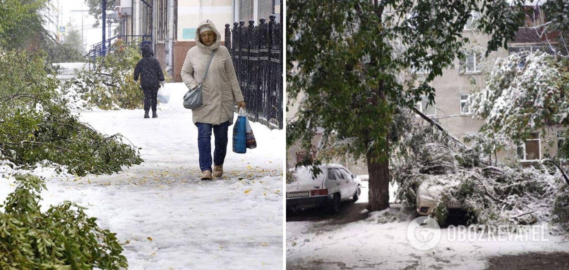 В России на один из регионов обрушился снежный ураган: ветер валил деревья, возникли проблемы с транспортом. Фото
