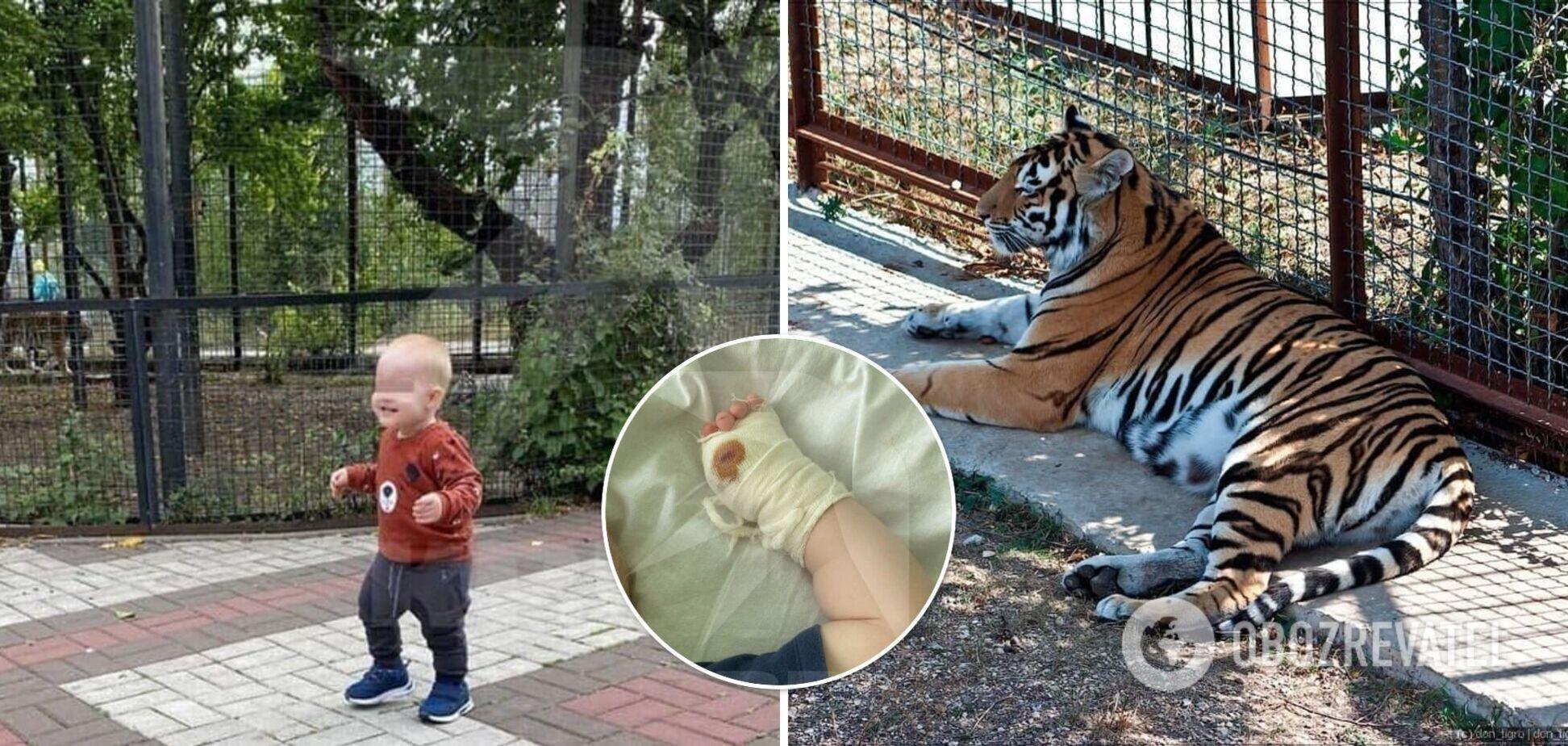 В Крыму тигр откусил палец годовалому ребенку в парке. Фото и детали трагедии