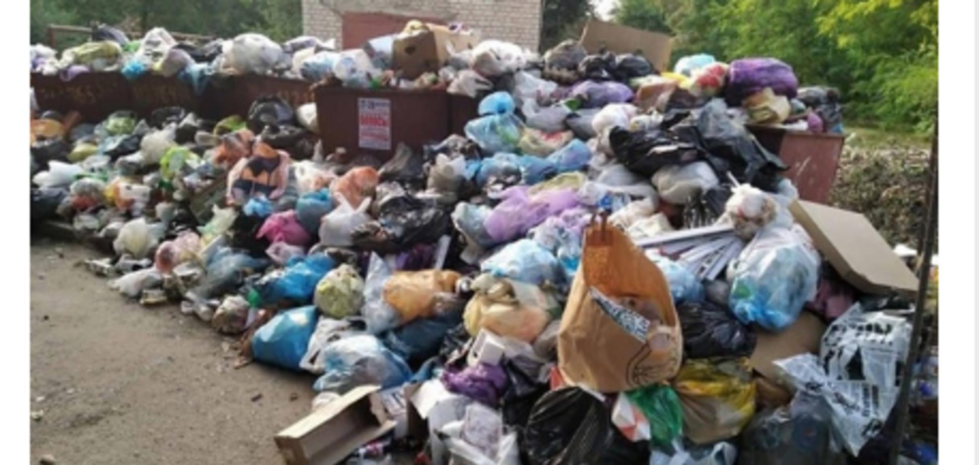 Голодное лицо 'русского мира': битва у мусорных баков