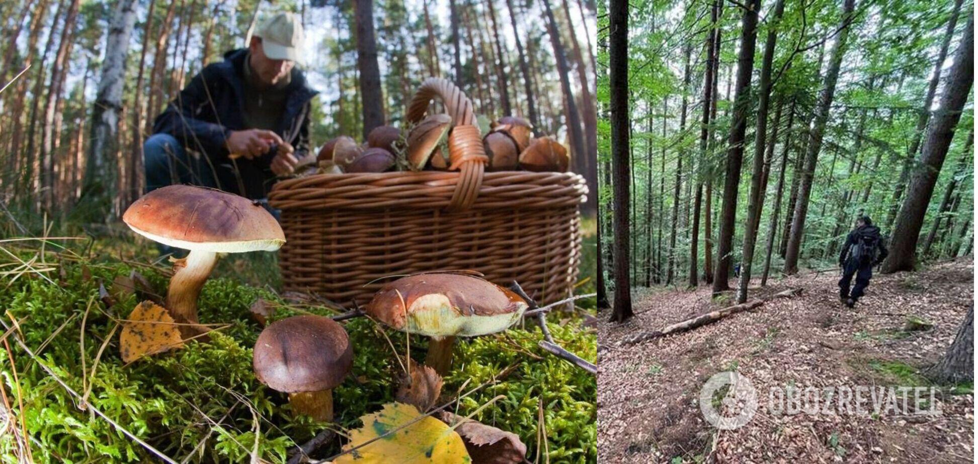 Зниклого на Буковині грибника знайшли мертвим