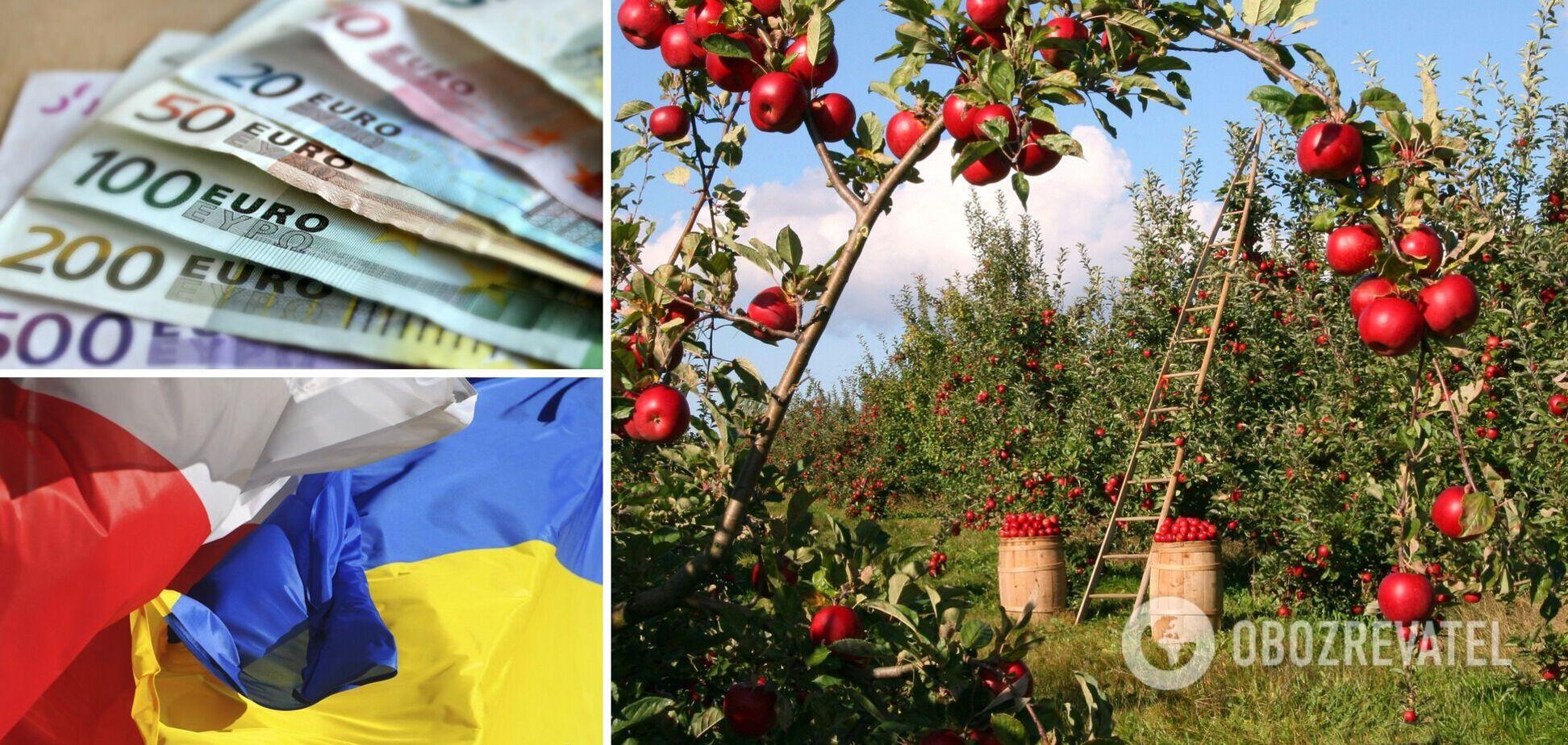 Заробітчани не їдуть до Польщі на збір яблук