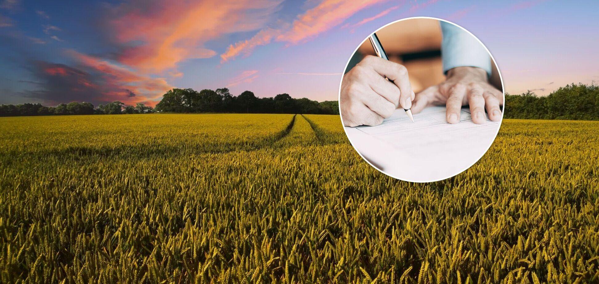 Получить землю в наследство поможет знание важных нюансов
