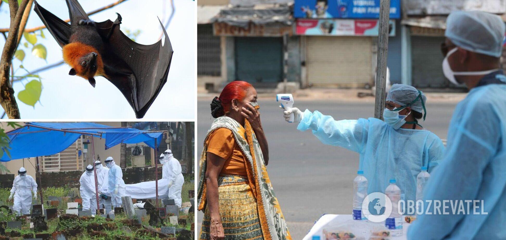 В Індії симптоми смертельно небезпечного вірусу Nipah виявили в 11 осіб: що відомо про інфекцію