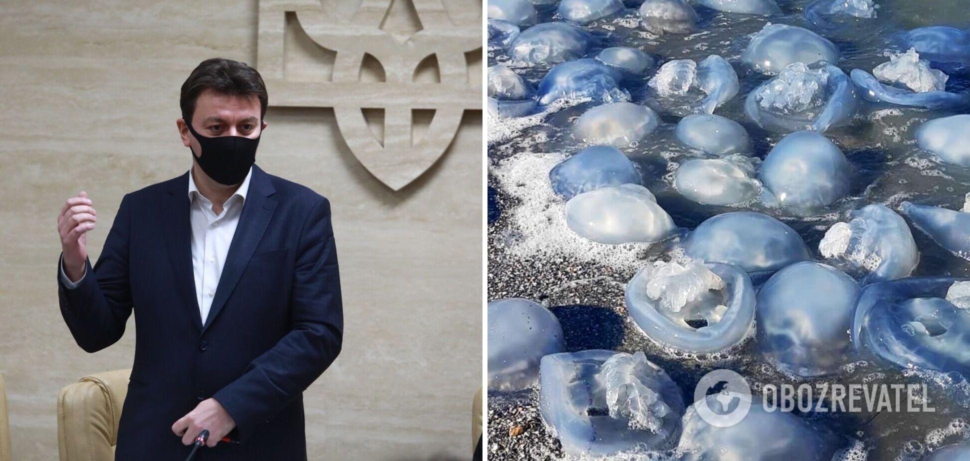 Глава Запорожской ОГА предложил подать в суд на Россию из-за испорченного медузами отдыха украинцев
