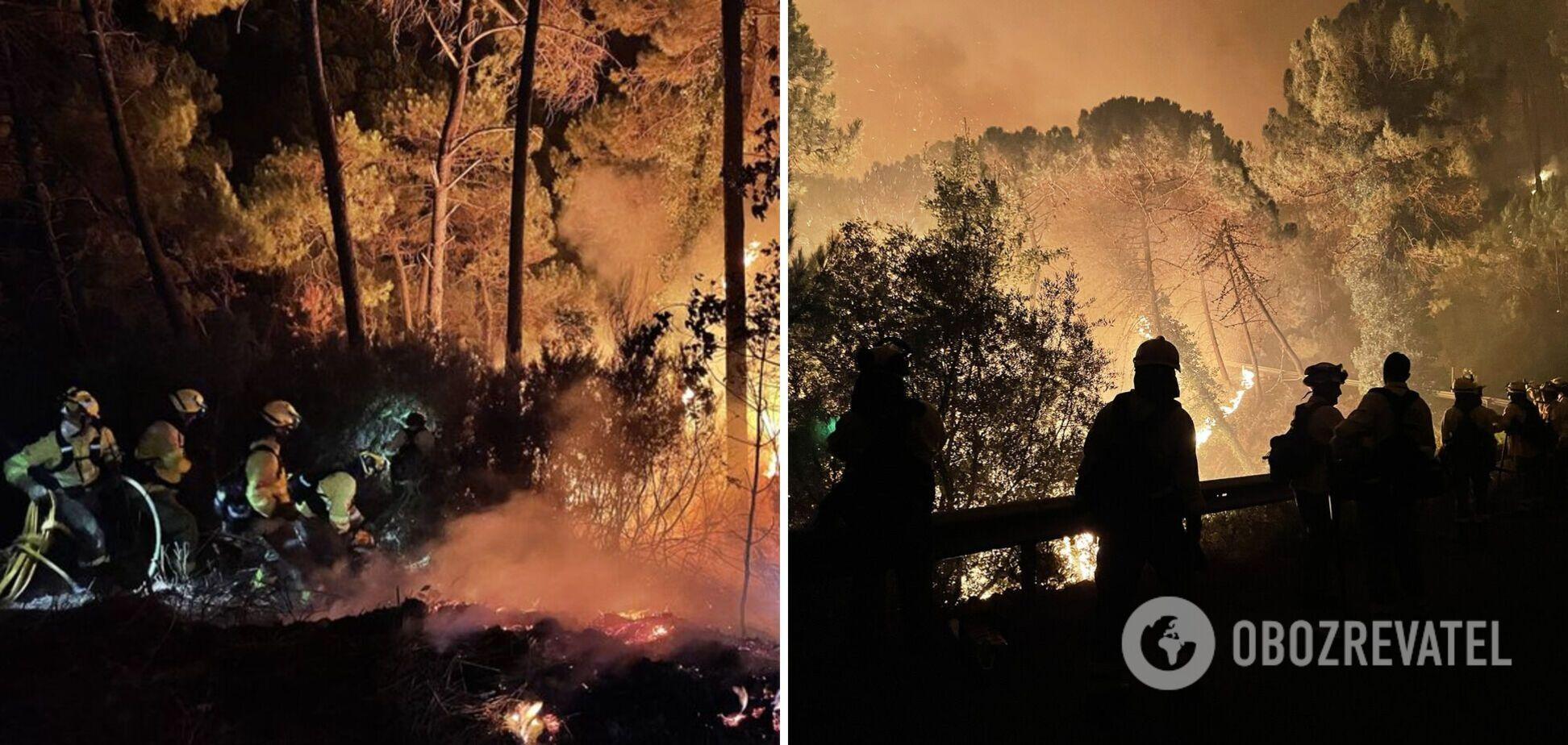 В Іспанії спалахнула масштабна лісова пожежа, сотні людей евакуювали. Фото та відео